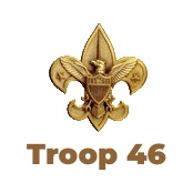 BoyScouts Troop 46 Logo